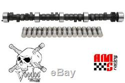 Lunati Voodoo 10120701LK Hyd Camshaft & Lifters Chevrolet 350 400 454/468 Lift