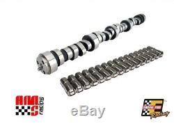Stage 2 OEM Roller Camshaft & Lifters for Chevrolet SBC 350 5.7L 434/462 Lift
